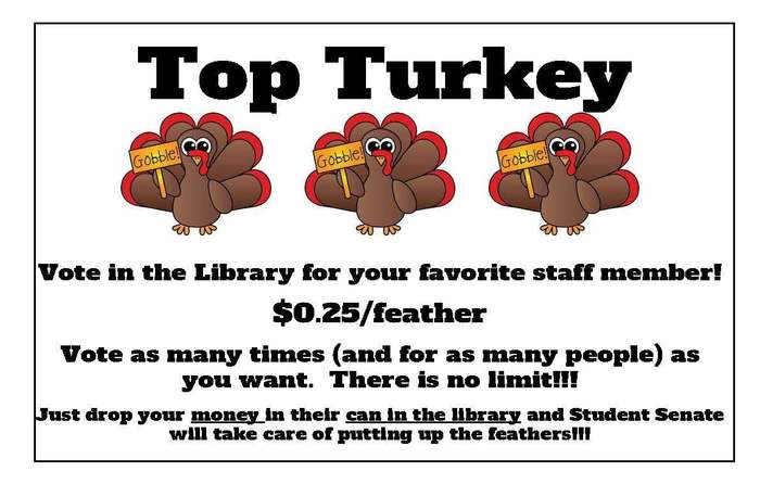 Top Turkey Flyer